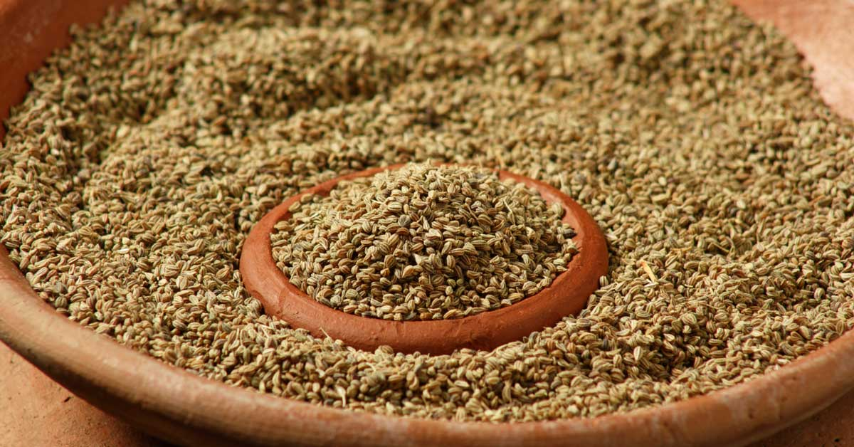 6 Emerging Benefits and Uses of Carom Seeds (Ajwain)