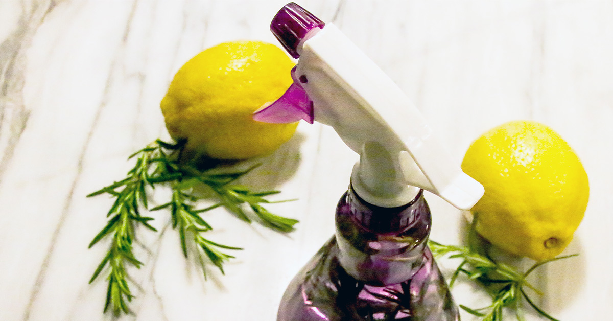 Homemade Bug Spray Natural Recipes For Your Skin Home And Plants