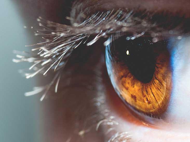 pupil eye sight sight one