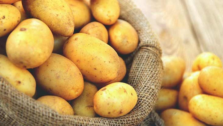 potato and water diet