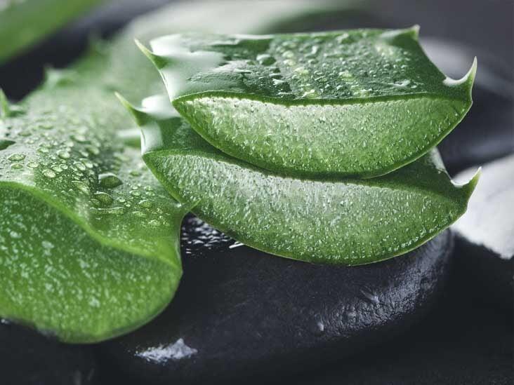 Aloe vera în tratamentul artrozei, Tratament artroza | Comunitatea mysneakers.ro