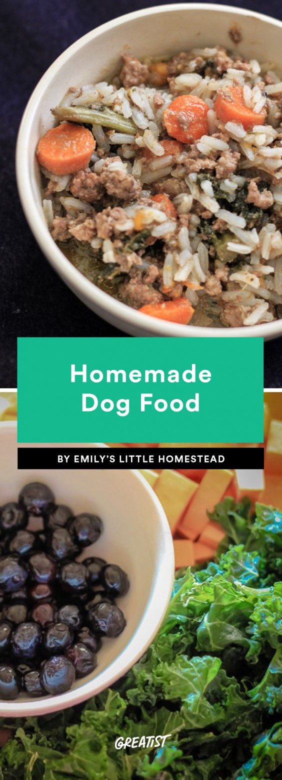 Homemade Dog Food: 6 Recipes Delicious