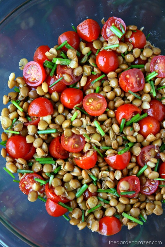 2. 5-Minute Lentil Tomato Salad