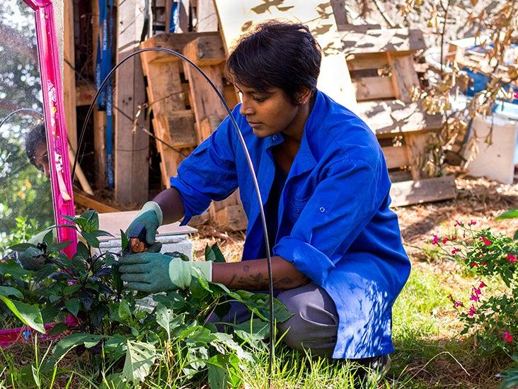 Growing Pecan crisp invasives ca Seedlings In Containers
