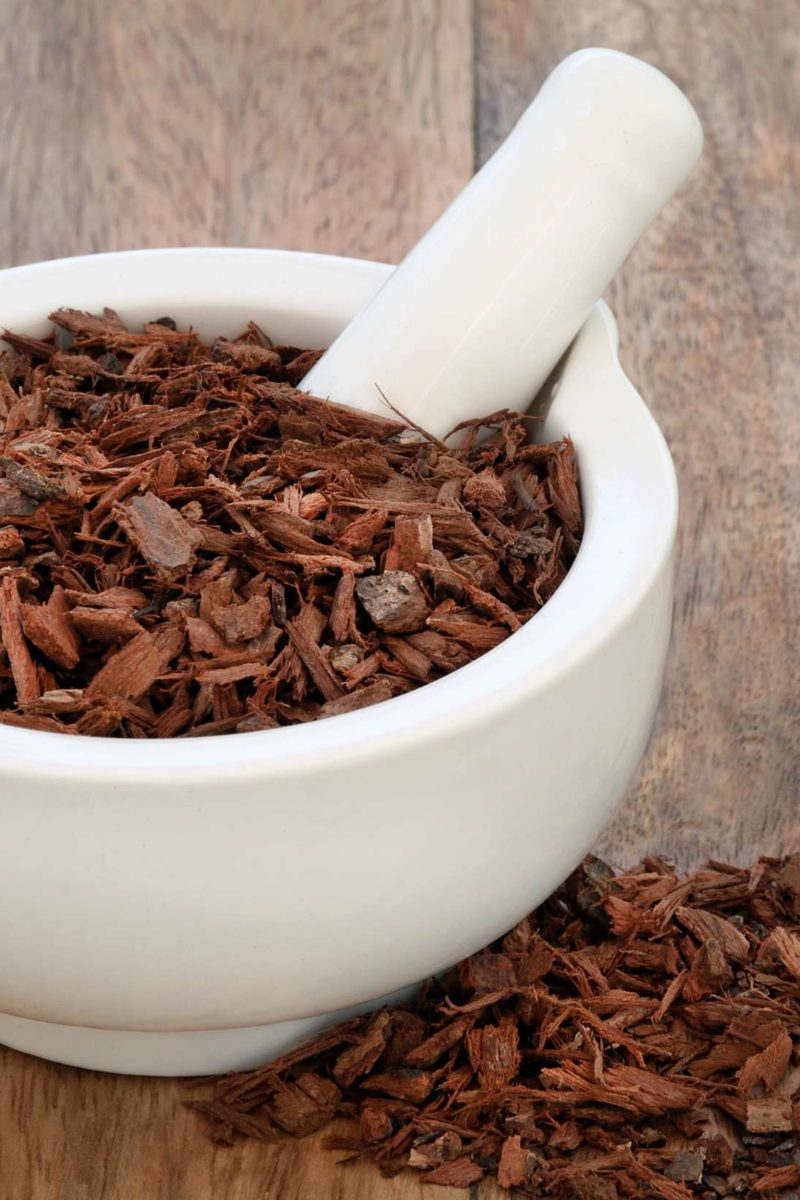 aloe vera for prostate health