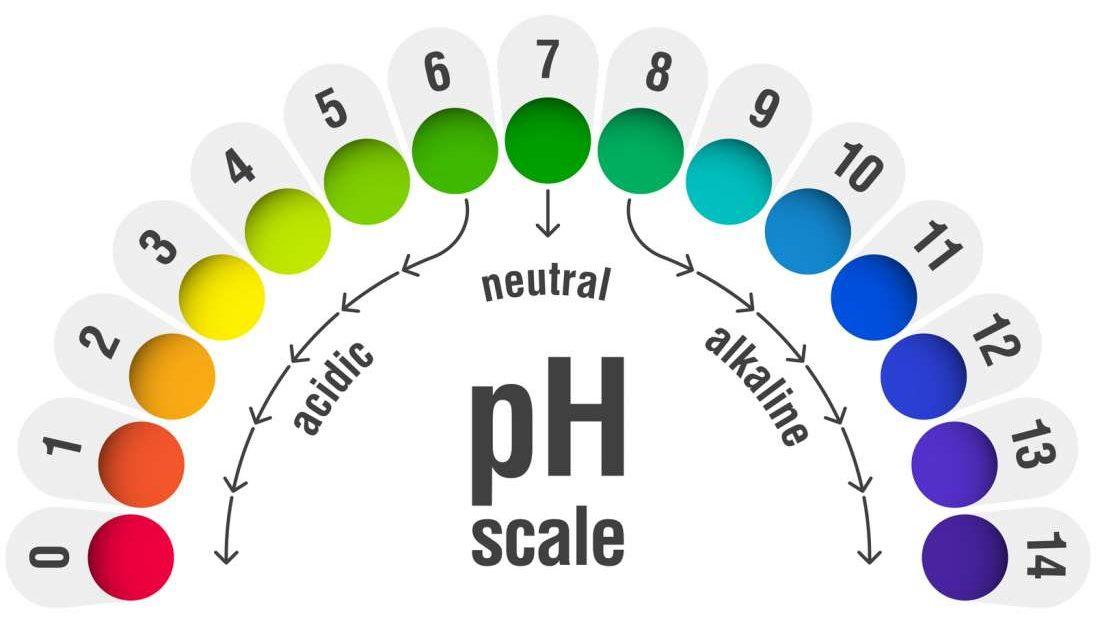 Vaginal pH balance: Normal levels and natural remedies