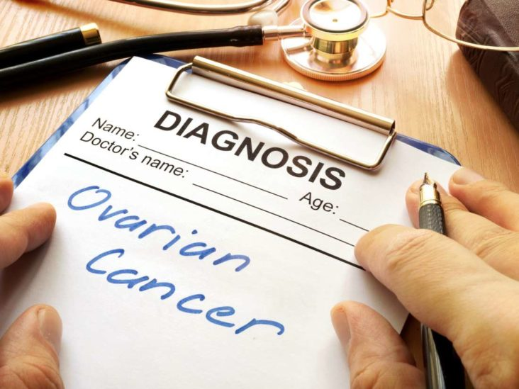 Blocking Ovarian Cancer S Energy Supply Helps Curb Spread