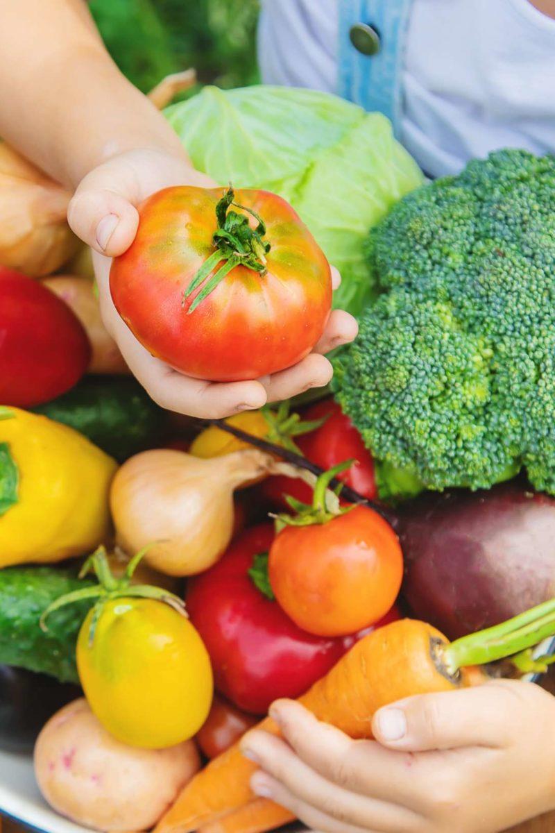 thyroid problems and vegan diet